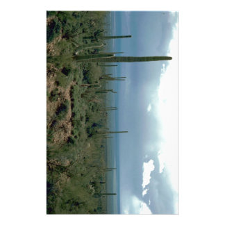 Arizona Desert and Cactuses Customised Stationery