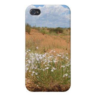 Arizona Desert iPhone 4/4S Covers