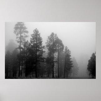 Arizona Fog Poster