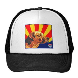 Arizona Labrador Mesh Hats