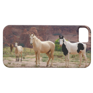 Arizona, Navajo Indian Reservation, Chinle, Barely There iPhone 5 Case