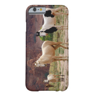 Arizona, Navajo Indian Reservation, Chinle, Barely There iPhone 6 Case