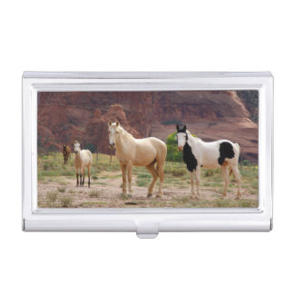 Arizona, Navajo Indian Reservation, Chinle, Case For Business Cards