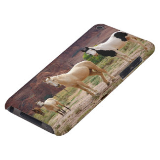 Arizona, Navajo Indian Reservation, Chinle, iPod Touch Case
