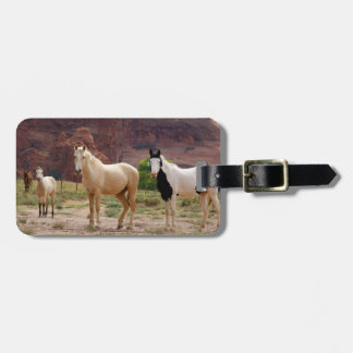 Arizona, Navajo Indian Reservation, Chinle, Luggage Tag
