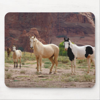 Arizona, Navajo Indian Reservation, Chinle, Mouse Pad