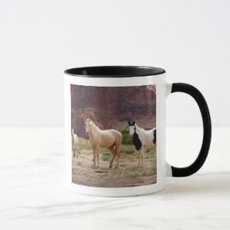 Arizona, Navajo Indian Reservation, Chinle, Mug