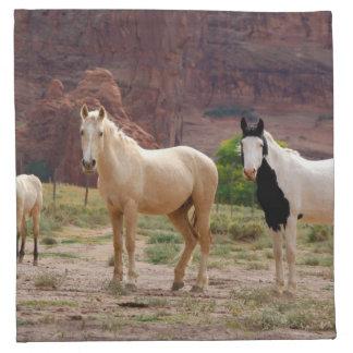 Arizona, Navajo Indian Reservation, Chinle, Napkin