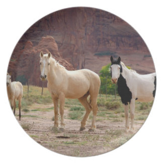 Arizona, Navajo Indian Reservation, Chinle, Plate