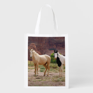 Arizona, Navajo Indian Reservation, Chinle, Reusable Grocery Bag