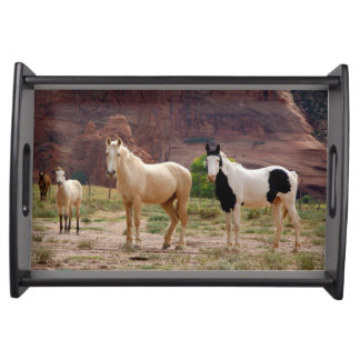 Arizona, Navajo Indian Reservation, Chinle, Serving Tray
