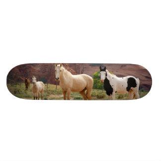 Arizona, Navajo Indian Reservation, Chinle, Skateboard Decks