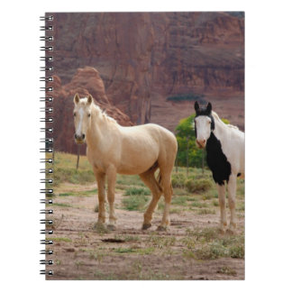 Arizona, Navajo Indian Reservation, Chinle, Spiral Note Books