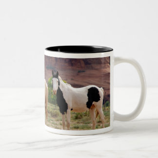 Arizona, Navajo Indian Reservation, Chinle, Two-Tone Coffee Mug