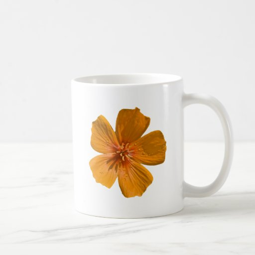 Arizona Poppy after rain Coffee Mugs