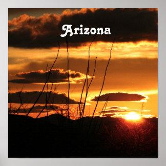 Arizona Print
