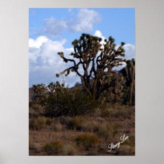Arizona Posters