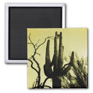 Arizona Saguaro Cactus Distressed Edition Square Magnet