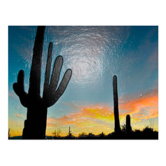 Arizona Saguaro Cactus  Sunset Plastic 3d Art Postcard