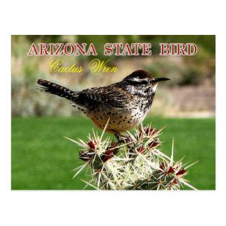 Arizona State Bird - Cactus Wren Post Cards