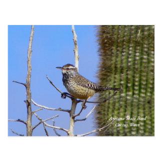 Arizona State Bird Postcard