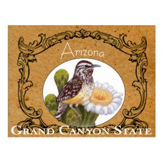 Arizona State Bird Vintage Postcard