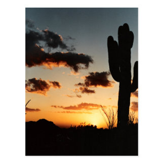 Arizona Sunset Picture Post Card