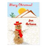 Arizona Tumbleweed Snowman Postcard