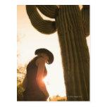 Arizona, USA 3 Post Cards