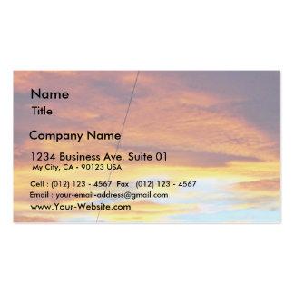 Ark Orange Sky At Sunset Pack Of Standard Business Cards