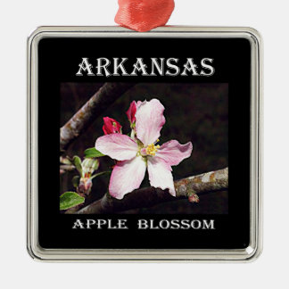 Arkansas Apple Blossom Christmas Ornament