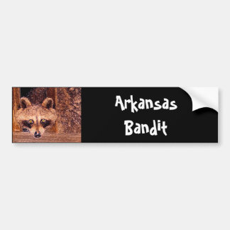 Arkansas Bandit Bumper Sticker