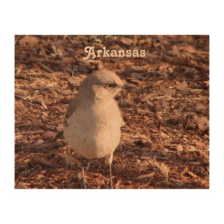 Arkansas Mockingbird Cork Paper