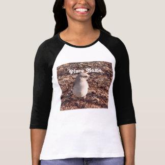Arkansas Mockingbird Tee Shirts