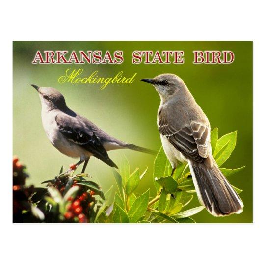 Arkansas State Bird - Mockingbird Postcard