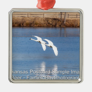 Arkansas Trumpeter Swans Silver-Colored Square Decoration