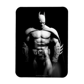 Arkham City | Batman Black and White Wide Pose Magnet