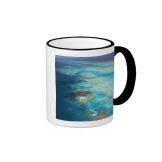 Arlington Reef, Great Barrier Reef Marine Park, Ringer Mug