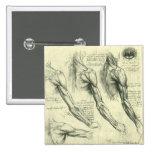 Arm and Shoulder Anatomy by Leonardo da Vinci 15 Cm Square Badge