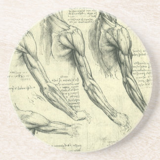 Arm and Shoulder Anatomy by Leonardo da Vinci Coaster