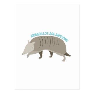 Armadillo_Armadillos_Are_Awe Postcard