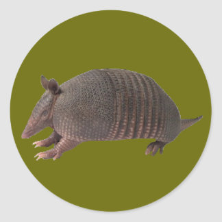 Armadillo plain classic round sticker
