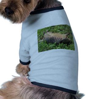 Armadillo Road Kill - Dasypodidae Dog T-shirt