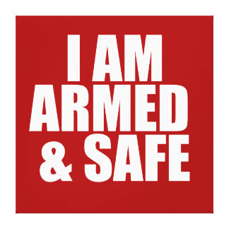 ARMED SAFE POSTER CANVAS PRINT