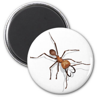 Army Ant Magnet