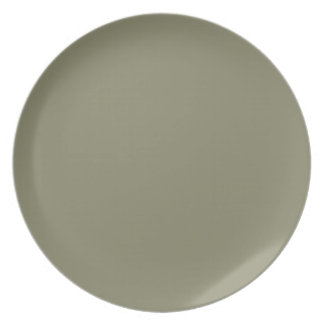 french grey dinner plates french grey party plates