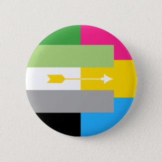Aromantic Pansexual Pin