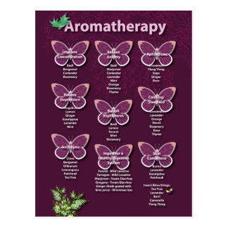 Aromatherapy Chart in Burgundy Postcard