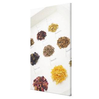 Arranged herbs canvas print