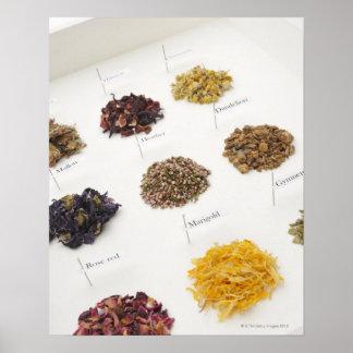 Arranged herbs poster
